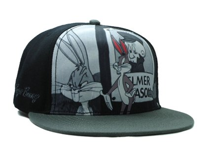 Cartoon Snapback Hat SF-H (10)
